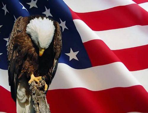 I Hear The Cry of Freedom